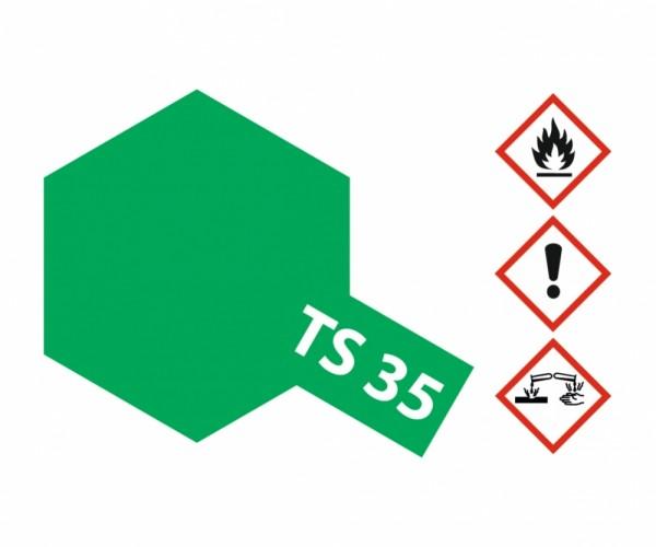 TS-35 Parkgrün glänzend 100ml