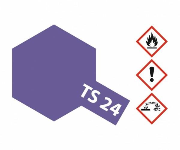 TS-24 Violett glänzend 100ml
